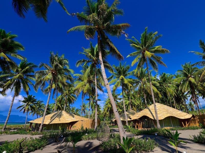 Coconut Garden Beach Resort